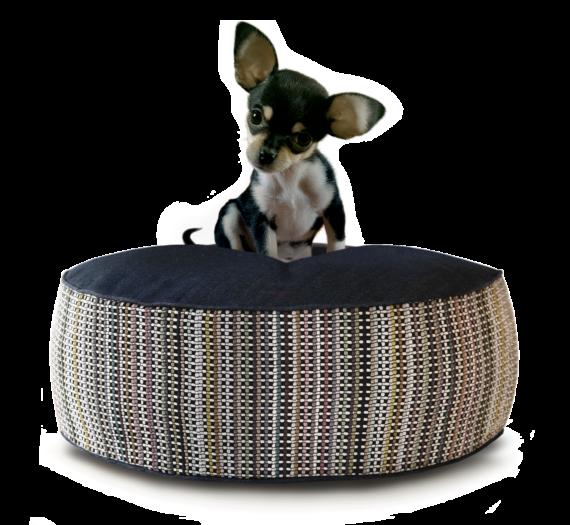 Small Dog Bed – Denim Dot Strip hero – Julie London Design