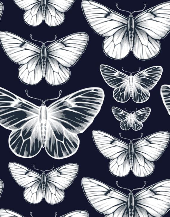 eGift Card Butterfly Kiss – Julie London