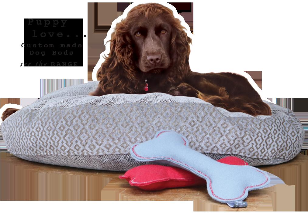luxury designer dog bed toys Sydney Australia