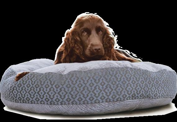 dog_bed_large_Julie_London_hero-4