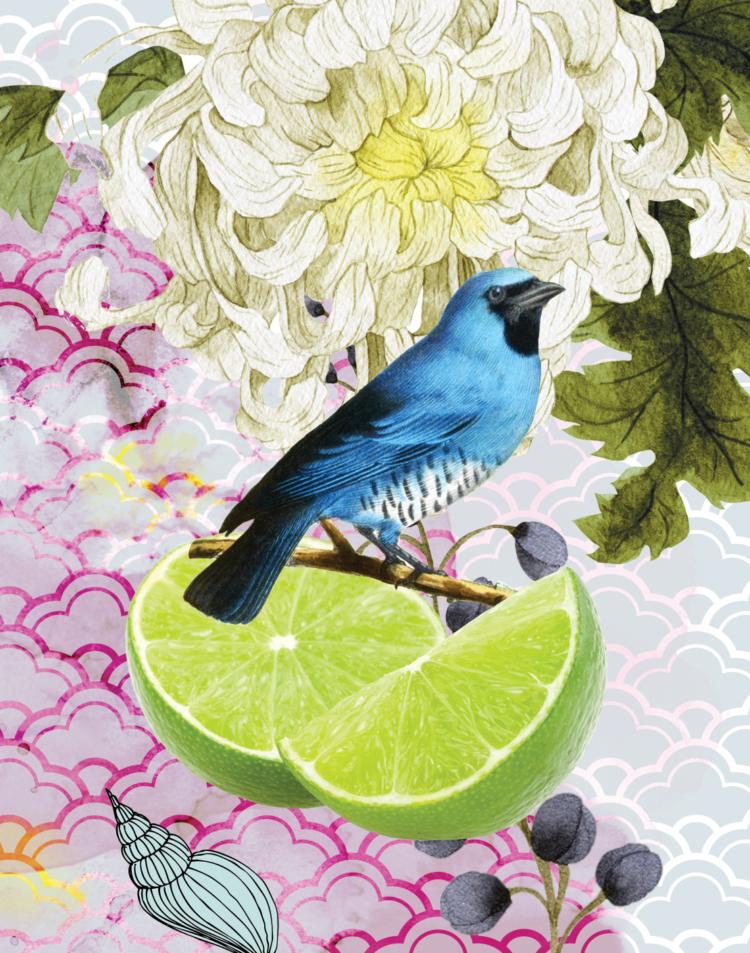 eGift card fruity delight - julie london