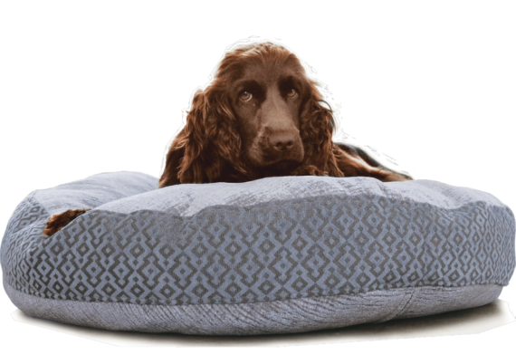 Velvet Dog Bed Large Blue Grey Hero - julie London