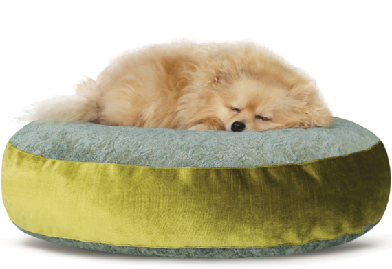 Luxury Velvet Dog Bed Large Teal Lime hero – Julie London