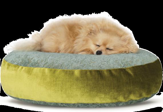 Luxury Velvet Dog Bed Large Teal Lime hero – Julie London